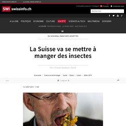La Suisse va se mettre à manger des insectes