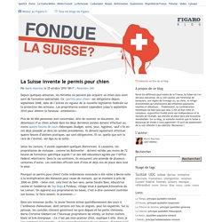 La Suisse invente le permis pour chien — Fondue, la Suisse ?