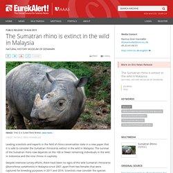 The Sumatran rhino declared extinct in Malaysia