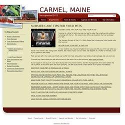 Summer Animal Care tips - CARMEL, MAINE
