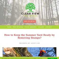 How to Keep the Summer Yard Ready by Removing Stumps?