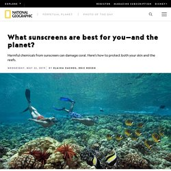 What sunscreens are best for you—and the planet?