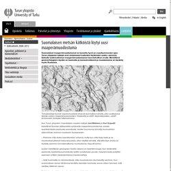 Suomalaisen metsän kätköistä löytyi uusi maaperämuodostuma