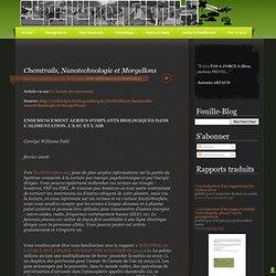Chemtrails, Nanotechnologie et Morgellons