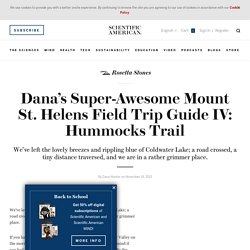 Dana's Super-Awesome Mount St. Helens Field Trip Guide IV: Hummocks Trail