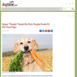 "Super ""People"" Foods For Pets: People Foods Fit For Your Pups"