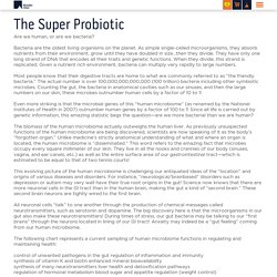 The Super Probiotic - Riordan Clinic