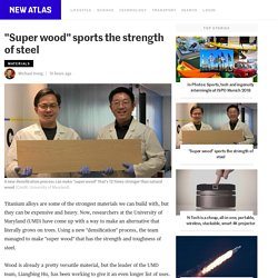 """""""Super wood"""" sports the strength of steel"""