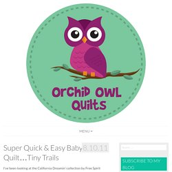 Super Quick & Easy Baby Quilt...Tiny Trails - Orchid Owl Quilts