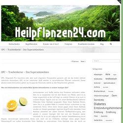 OPC - Traubenkerne - Das Superantioxidans - Heilpflanzen24.com