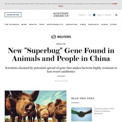 "REUTERS 19/11/15 New ""Superbug"" Gene Found in Animals and People in China"