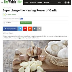Supercharge the Healing Power of Garlic - EcoWatch