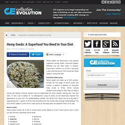 Hemp Seeds: A Superfood You Need In Your Diet