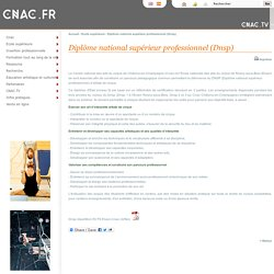 Diplôme national supérieur professionnel (Dnsp)