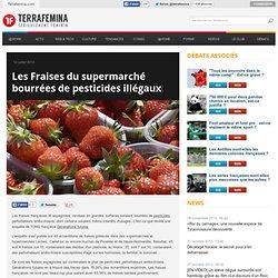 Les Fraises du supermarché bourrées de pesticides illégaux