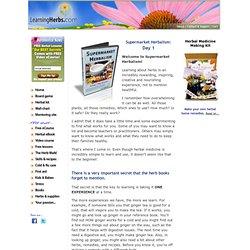 Supermarket Herbalism: Day 1