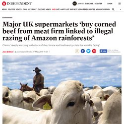 Major UK supermarkets 'buy corned beef from meat firm linked to illegal razing of Amazon rainforests'