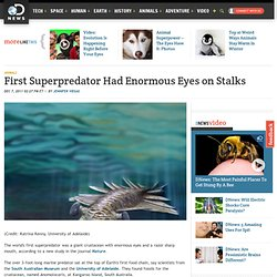 First Superpredator Had Enormous Eyes on Stalks