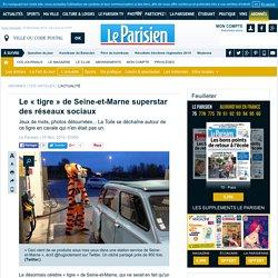 Le «tigre» de Seine-et-Marne superstar des réseaux sociaux