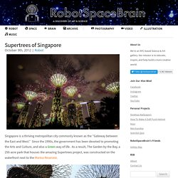 Supertrees of Singapore - RobotSpaceBrain