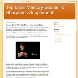 "Top Brain Memory Booster & Sharpness Supplement: Human Brain: ""The Significant part of human body"""