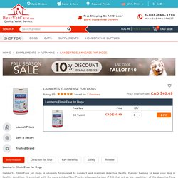 Lamberts EliminEase for Dogs for Supplements: Buy Lamberts EliminEase for Dogs for Supplements at lowest Price - BestVetCare.com