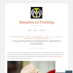 Long Lasting Protein Supplements- Importance and Benefits – Monsters in Training