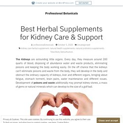 Best Herbal Supplements for Kidney Care & Support – Professional Botanicals