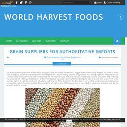Grain Suppliers For Authoritative Imports