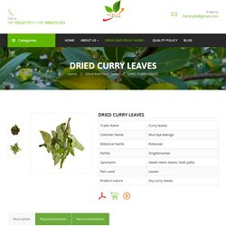 Dried Curry Leaves Suppliers