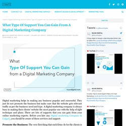 What Type Of Support You Can Gain From A Digital Marketing Company