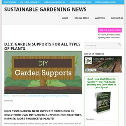 D.I.Y. Garden Supports for All Types of Plants - Sustainable Gardening News