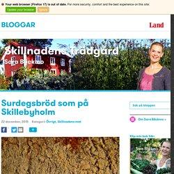 Surdegsbröd som på Skillebyholm