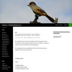Johnsson – Forsberg Webresurser