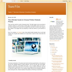 SureVin: The Ultimate Guide to Choose Perfect Website Photos
