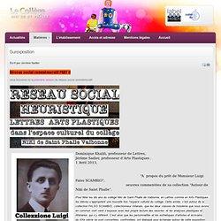 Surexposition - Collège Niki de Saint Phalle, Académie de Nice, Education Nationale