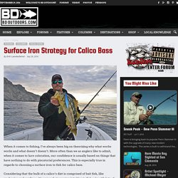Surface Iron Strategy for Calico Bass - BD Outdoors