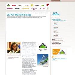 Grandes surfaces de bricolage et de décoration LEROY MERLIN France