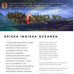 Lär dig surfa i episka indiska oceanen.