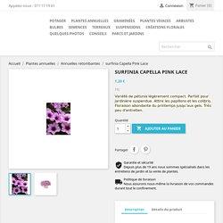 surfinia Capella Pink Lace