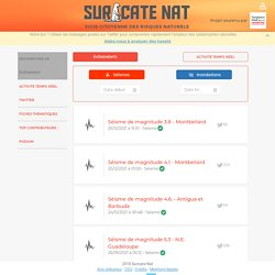 Suricate-Nat Accueil