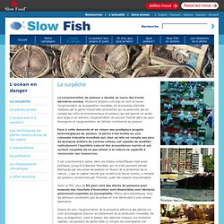 Slow Fish - Local Sustainable Fish