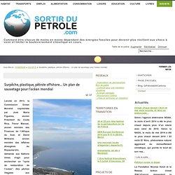 Surpêche, plastique, pétrole offshore... Un plan de sauvetage pour l'océan mondial