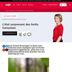 L'état surprenant des forêts françaises