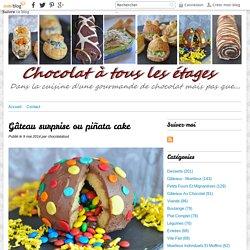 Gâteau surprise ou piñata cake -