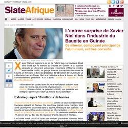 L'entrée surprise de Xavier Niel dans l'industrie du Bauxite en Guinée