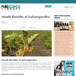 Ashwagandha Benefits For Losing Weight Fast