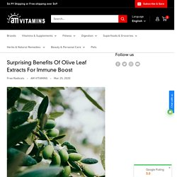 Surprising Benefits Of Olive Leaf Extracts For Immune Boost– AM VITAMINS