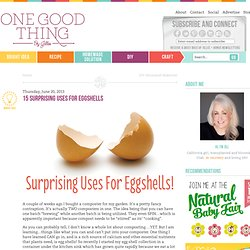 15 Surprising Uses For EggshellsOne Good Thing by Jillee