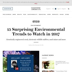 15 Surprising Environmental Trends to Watch in 2017